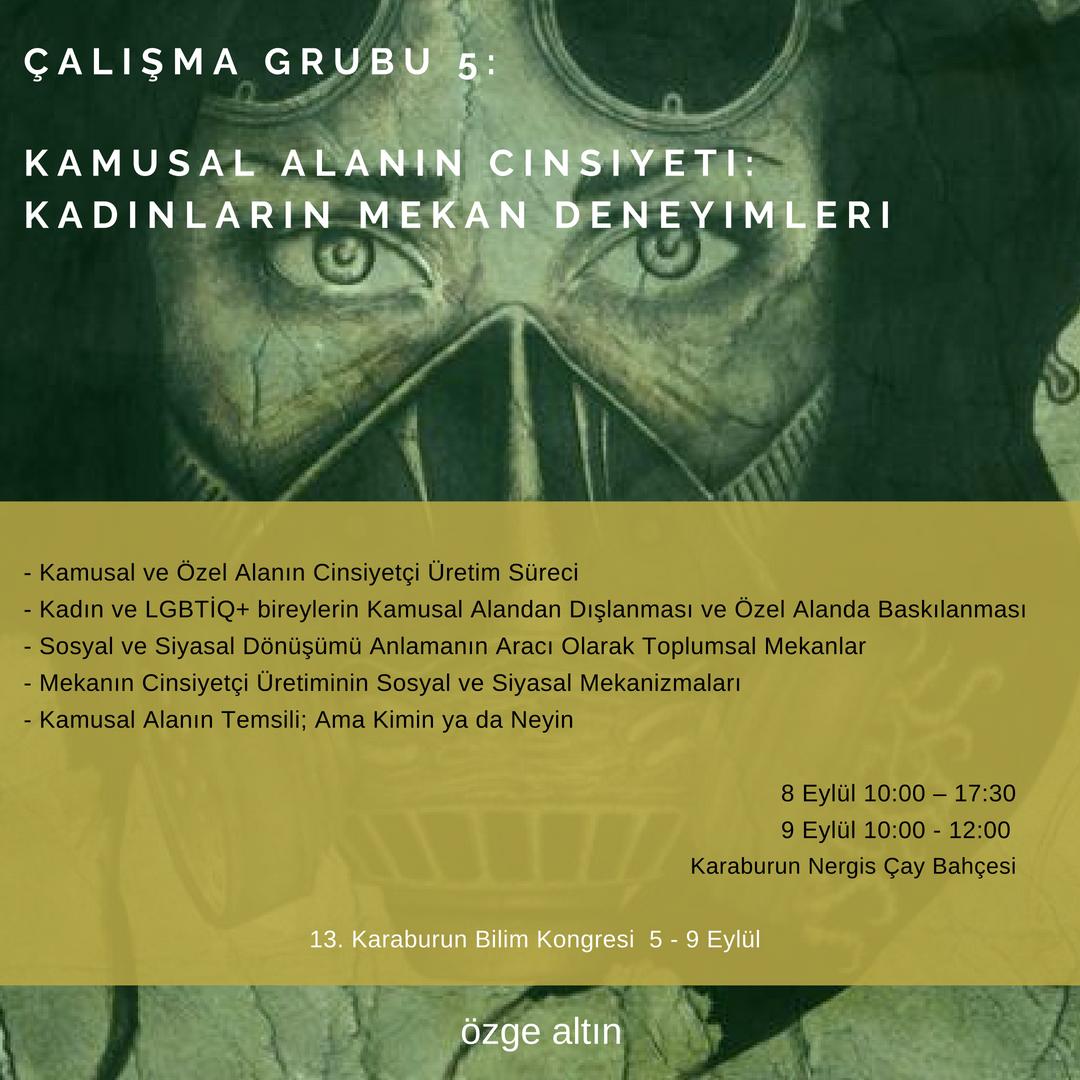 5-_KAMUSAL_ALANIN_CINSIYETI
